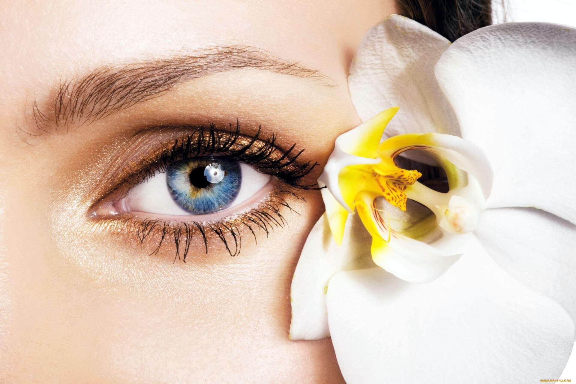 Глаукома – диагностировать и вылечить!